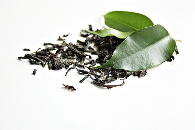 Grüner Tee Blätter